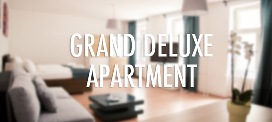 grand deluxe apartment
